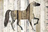 Cavalo Indomável Posters por Michael Mullan