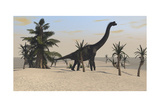 Large Brachiosaurus in a Tropical Environment Pósters