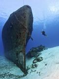 Diver Exploring the Felipe Xicot�Ncatl Shipwreck in Cozumel, Mexico Fotografie-Druck