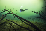 A Diver in the Car Wash Cenote System in Mexico Fotografie-Druck