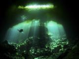 A Diver in the Garden of Eden Cenote System in Mexico Fotografie-Druck