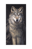 Blue Owl - Wolf Premium Giclee Print by Penny Wagner