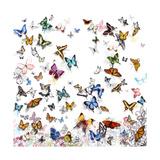 Papillon Premium Giclée-tryk af Allyson Fukushima