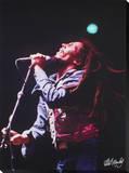 Bob Marley: Sings Bedruckte aufgespannte Leinwand