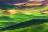 Palouse 1 Fotografie-Druck von Ursula Abresch