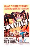 Tarántula|Tarantula Pósters