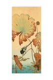 Wagtail and Lotus Impressão giclée premium por Koson Ohara