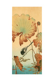 Wagtail and Lotus Giclee Print by Koson Ohara