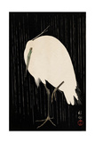 White Heron Standing in the Rain Giclée-tryk af Koson Ohara