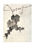 Bunch of Grapes Giclee Print by Jakuchu Ito