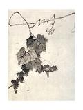 Racimo de uvas Lámina giclée por Jakuchu Ito