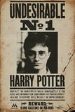 Harry Potter - Undesirable No 1 Stampe