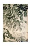 Palms Sumi on Paper Giclée-tryk af Jakuchu Ito