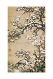 Birds on Aronia Branch Giclee Print by Jakuchu Ito