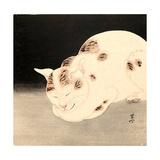 Sleeping Cat Giclée-tryk af Kyosai Kawanabe