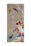 Mandarin Duck in the Snow 1 Giclée-tryk af Jakuchu Ito