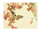 Flowers and Birds Picture Album by Bairei No.10 Giclée-tryk af Bairei Kono