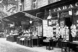 A Tobacconist's Shop Photographic Print by Brothers Seeberger