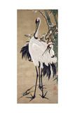 Two Cranes Giclée-tryk af Jakuchu Ito