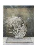 Desert Form I Prints by Elena Ray