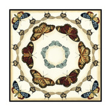 Butterfly Collector II Metal Print by Chariklia Zarris