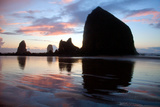 The Setting Sun Silhouettes Coastal Sea Stacks Fotografisk trykk av Vickie Lewis