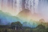 A Massive Rainbow Descends over Iguazu Falls Fotografisk tryk af Alex Saberi