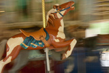 Carved Animals Speed Past on a Historic 1915 Carousel Fotografisk trykk av Vickie Lewis