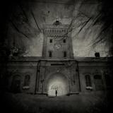 Winters Dream Photographic Print by Svante Oldenburg