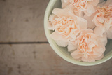 A Little Bowl of Clove Pink ... Fotografie-Druck von Laura Evans