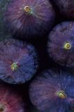 Purple Figs Iii Fotografisk trykk av Den Reader