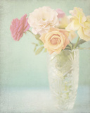 Pastel Roses Giclee Print by Shana Rae