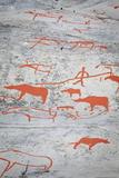 Alta Rock Art, UNESCO World Heritage Site, Alta, Finnmark, Norway, Scandinavia, Europe Photographic Print by Doug Pearson