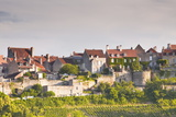 Le Clos Vineyard Below the Hilltop Village of Vezelay in Burgundy, France, Europe Lámina fotográfica por Julian Elliott