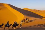 Tourists on Camel Safari, Sahara Desert, Merzouga, Morocco, North Africa, Africa Lámina fotográfica por Doug Pearson