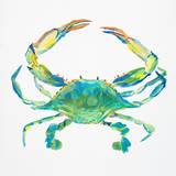 Sealife IV Kunstdrucke von Julie DeRice