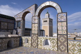 View over the Medina of Tunis and the Main Mosque, Tunisia, North Africa, Africa Stampa fotografica di Ethel Davies
