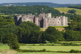 Raglan Castle, Monmouthshire, Wales, United Kingdom, Europe Photographic Print by Billy Stock