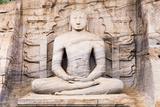 Seated Buddha in Meditation Fotografisk trykk av Matthew Williams-Ellis