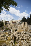 The Pool of Bethesda, the Ruins of the Byzantine Church, Jerusalem, Israel, Middle East Photographic Print by Yadid Levy