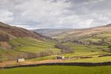 Swaledale in the Yorkshire Dales National Park, Yorkshire, England, United Kingdom, Europe Fotografisk trykk av Julian Elliott