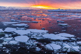 Sunset over Ice Floes and Icebergs, Near Pleneau Island, Antarctica, Southern Ocean, Polar Regions Photographic Print by Michael Nolan