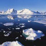 Ice Floe on the Antarctic Peninsula Fotografisk tryk af Geoff Renner