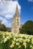 Llandaff Cathedral, Llandaff, Cardiff, Wales, United Kingdom, Europe Photographic Print by Billy Stock