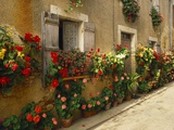 Exterior of a Rustic House Covered with Flowers, Landes, Aquitaine, France Reproduction photographique par Michael Busselle