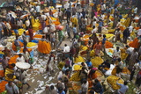 Mullik Ghat Flower Market, Kolkata (Calcutta), West Bengal, India, Asia Photographic Print by Bruno Morandi
