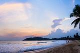 Mirissa Beach, Palm Tree at Sunset on the Indian Ocean, South Coast Reproduction photographique par Matthew Williams-Ellis