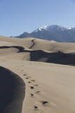 Sand Dunes in the Great Sand Dunes National Park and Preserve Impressão fotográfica por Richard Maschmeyer