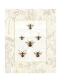 Bee Botanical Premium Giclee Print by Sue Schlabach