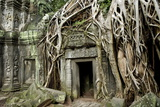 Ta Prohm Temple Dating from the Mid 12th to Early 13th Centuries Reproduction photographique par Jean-Pierre De Mann